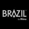 Brazil_100X100_BW