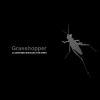 Grasshopper_100X100_BW